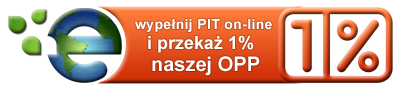 http://www.fundusz.saletyni.pl/files/images/butonline.png